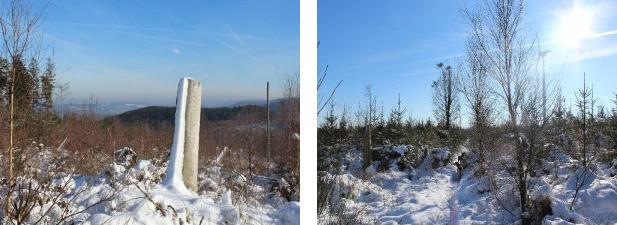 2bilder